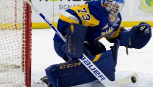 Maier sets profession franchise checklist as Blades clean Tigers 4-0